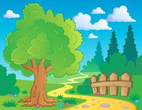 Tree theme image 2 Royalty Free Stock Photography