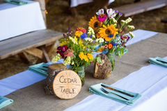 Tree Themed Wedding Reception Decor Royalty Free Stock Photos