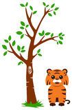 Tree and Tiger Stock Photo