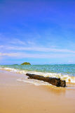 Tree Timber on the beach with blue sky and island. stock photo
