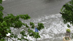 Tree in to the storm. After storm floods leave ugly stock video footage
