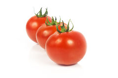 Tree tomatoes. Tree vine tomatoes, fresh with water droplets, isolated on white Royalty Free Stock Photo