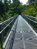 Tree top walk Southern Ridges trail in Singapore Stock Images