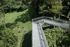 Tree top forest walk ,Southern Ridges trail in Singapore Stock Photo