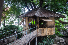 Tree top house Royalty Free Stock Image