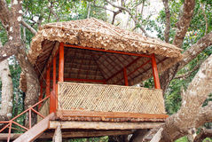 Tree top hut Stock Photo