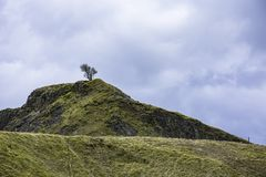 Tree on top of the rocky hill. And blue sky .Peak District National Park ,Derbyshire Uk.Stunning british countryside landscape in early spring.Green hills of Royalty Free Stock Photography