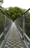Tree top walk royalty free stock images