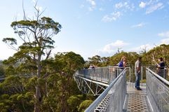 Tree Top Walk in the Valley of the Giants: Denmark, Western Australia stock photo