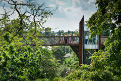 Tree top wandering landscape - Royal Botanic Gardens Kew. A tall steel bridge walkway allows visitors to walk in the tree tops with a spectacular view over Royal royalty free stock photos
