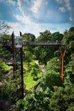 Tree top wandering - Royal Botanic Gardens Kew Royalty Free Stock Photography