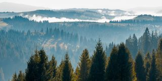 Tree tops above the foggy valley. Wonderful autumn landscape royalty free stock photography