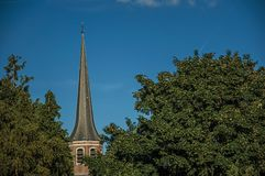 Tree tops and bellow tower roof at sunset and blue bright sky in Tielt. Charming and quiet village in the countryside, near Ghent and surrounded by Stock Photos