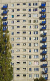 Tree and tower block in Poznan Stock Photos
