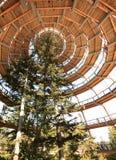 The tree tower Neuschönau