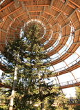 The tree tower Neuschönau Stock Images
