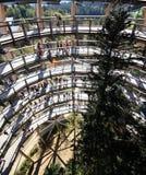 The tree tower Neuschönau Stock Photos