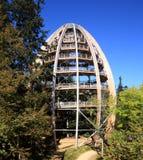 The tree tower Neuschönau Stock Photography