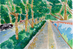 Tree trail ,a watercolor painting Royalty Free Stock Photos