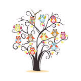 Tree. Tree with colorful owls vector background. Illustration Stock Photography
