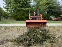 Tree Trimmer Dumping Limbs Into Pile Royalty Free Stock Photo