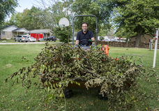 Tree Trimmer With Load Of Limbs Royalty Free Stock Photos