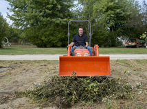 Tree Trimmer Stomping Down Tree Limb Pile Stock Image