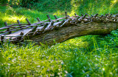 Tree trunk bridge. Bridge made from old tree trunk in green countryside Stock Images
