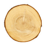 Tree trunk cross section. CLIPPING PATH Royalty Free Stock Images
