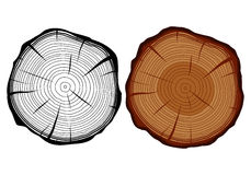 Tree trunk in a cut. Set of two vector isolated tree trunks in a cut - monochrome and color Stock Images