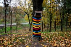 Bird feeder in the park. The tree trunk is decorated with a multi-colored striped knitted thing. stock images
