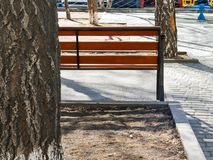 Tree Trunk, Empty Bench at the Paved Kids Playground Area in the Park on a Spring Afternoon with Long Shadows.  stock photography
