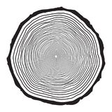 Tree trunk rings design isolated on white background royalty free illustration