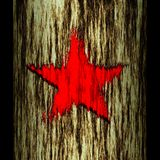 Tree trunk: star. Illustration: tree trunk: star royalty free illustration