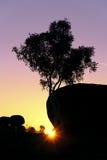 Tree trunk sunset. Sunset, tree and granite boulders at Devils Marbles (Karlu Karlu), Northern Territory, Australia Royalty Free Stock Photo