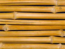 Tree trunks a bamboo Royalty Free Stock Photo