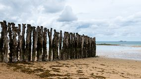 Tree trunks on the beach of Saint-Malo at low tide. Tree trunks on the beach of Saint-Malo Brittany, France at high tide on a cloudy day in summer royalty free stock photography