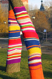 Tree trunks decorated by colorful knitwork Royalty Free Stock Photos