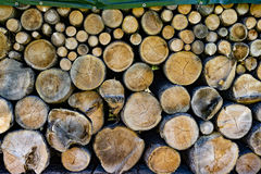 Tree trunks in different sizes. Piled up tree trunks in different sizes Stock Images