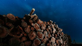 Tree trunks stacked against the night sky stock footage