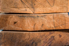 Tree trunks. And wood boards Stock Images