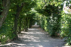 Tree tunnel, Kromeriz Stock Images