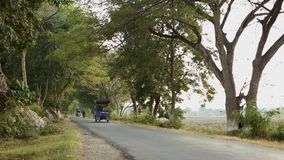 Tree tunnel road in Bagan, Myanmar. Many vehicles run on tree tunnel road in Bagan, Myanmar. The Bagan Archaeological Zone is a main draw for the country's stock video