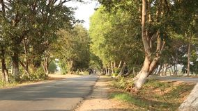 Tree tunnel road in Bagan, Myanmar. View of the tree tunnel road in Bagan, Myanmar. Bagan lies in the middle of the dry zone of Burma, the region roughly between stock footage