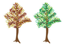 Tree in two colors Stock Image