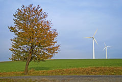 Tree and two wind power plants. Field with autumn tree and two wind power plants stock photo