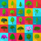 Tree types icons set, flat style. Tree types icons set. Flat illustration of 25 tree types vector icons for web Royalty Free Stock Images