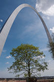 Tree under Gateway Arch Royalty Free Stock Image