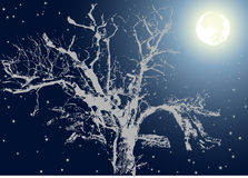 Tree under moon light Royalty Free Stock Images