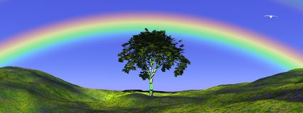 Tree under rainbow Stock Photos